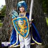 Noble Knight blåt ridderskjold - Liontouch